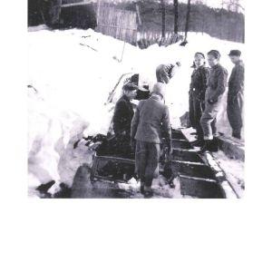 Gåsör januari 1954