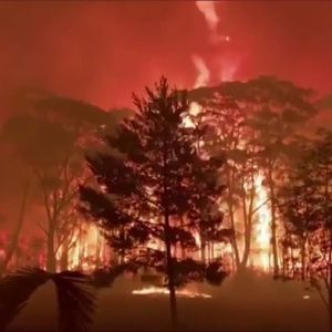 Bränder i Australien