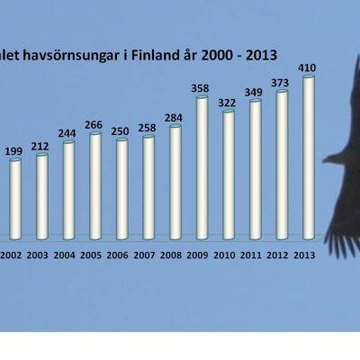 Antalet ringmärkta havsörnsungar 2000-2013