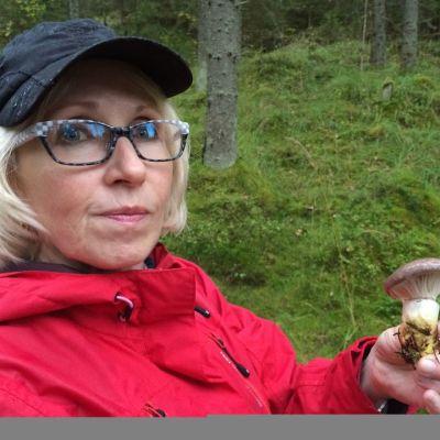 Metsästä löytyi limanuljaskoja.