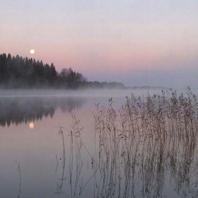 Iso-Roineella Hauholla aamulla 28.10.2015