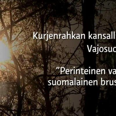 Yle Uutiset Lounais-Suomi: Näin syntyy nopea lohiherkku metsän siimeksessä