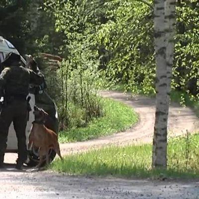 Yle Uutiset Pirkanmaa: Poliisioperaatio Ylöjärven Kurussa