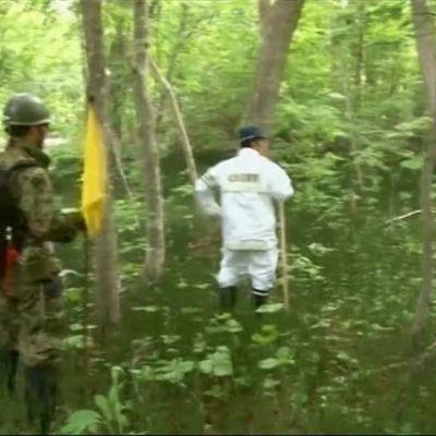 Uutisvideot: Metsään hylätyn ja kadonneen japanilaispojan tapaus päättyi onnellisesti