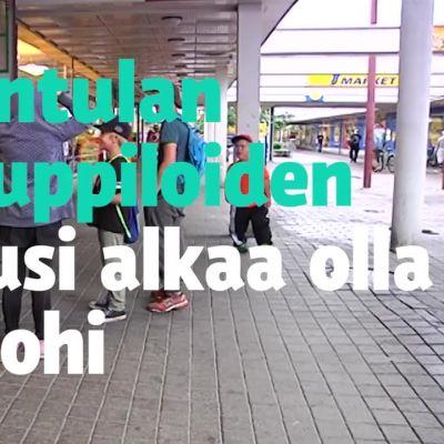 Uutisvideot: Maahanmuuttajataustaiset yrittäjät toivat uutta nostetta Kontulan ostarille