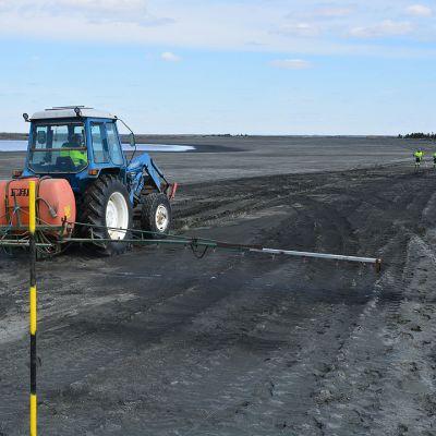 Hituran kaivoksen rikastushiekka-altaiden pölyongelmaa yritettiin toukokuussa saada kuriin kastelemalla hiekkaa mäntyöljypohjaisella aineella.