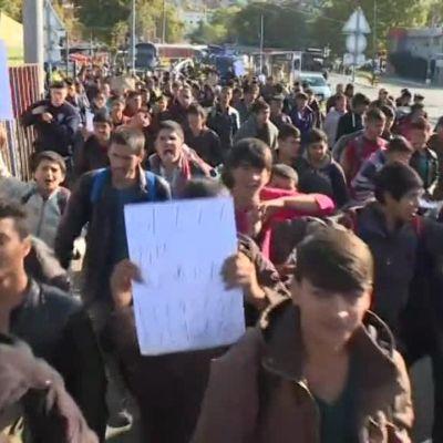 Uutisvideot: Pakolaisjoukko kävelee kohti Unkarin rajaa