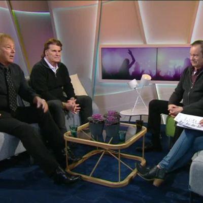Ylen aamu-tv: Finnhittien kuninkaat Danny, Frederik ja Tapani Kansa