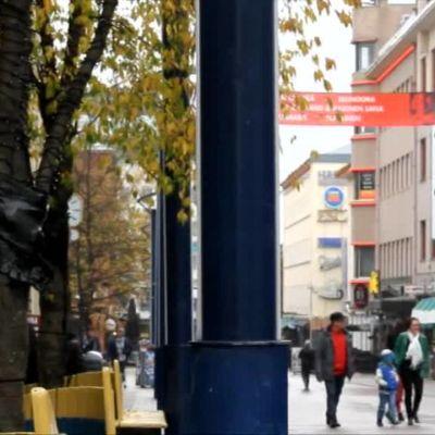 Uutisvideot: Haukkuva varis hämmästyttää vilkkalla kävelykadulla Jyväskylässä