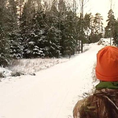 Yle Uutiset Lounais-Suomi: Jousimetsästys on pienestä kiinni – kävimme kaurisjahdissa Maskussa