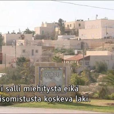 Uutisvideot: Israelilaisprofessori kertoo, miksi siirtokuntalaki on oikeudellisesti ongelmallinen