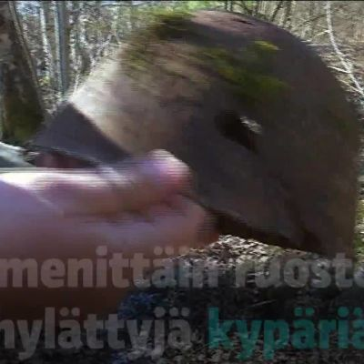 Hylätyt kypärät herättävät kiinnostusta Hämeenlinnassa