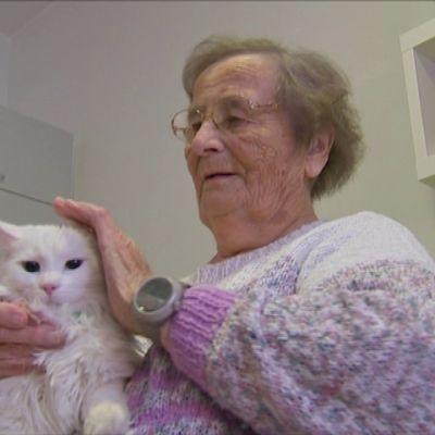 Yle vieraili vuonna 2017 yläneläisessä Kartanokodissa tapaamassa palomiesten pelastamaa Liekki-kissaa. Se on nykyisin enemmän kuin kissa eli osa henkilökuntaa.