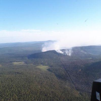 Metsäpalo Venäjän Ratsasvaarassa.