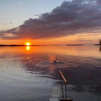 Lappeenrannan Joutsenossa sijaitsevilta Hinkan saunoilta on näköala Saimaalle.