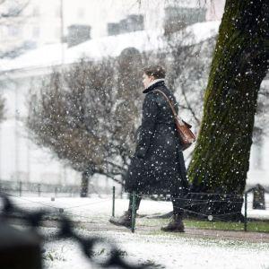 En man promenerar i snöfall i en vårig park.