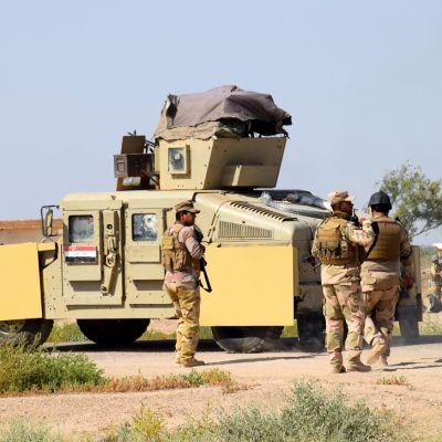 Irakin armeijan joukkoja Fallujan lähellä.