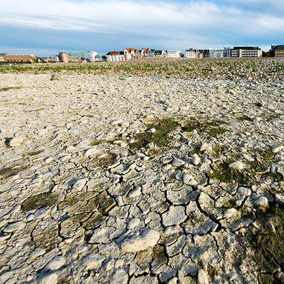 Reinjoen vedenpita on alskenut lähes ennätyksellisen alas.
