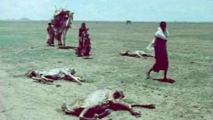 Svultna djur i Etiopiens savann