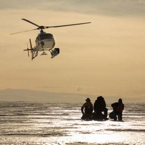 En helikopter flyger ovanför isen i Antarktis. På isen sitter tre mänskor.
