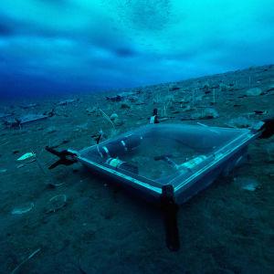 Dykare samlar in forskningsmaterial under isen i Antarktis.