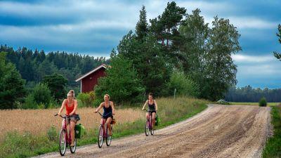 Tre kvinnor cyklar i Nagu på Skärgårdens ringväg.