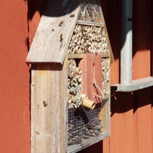 Tre bilder på bin på ett så kallat insektshotell på en röd trävägg.