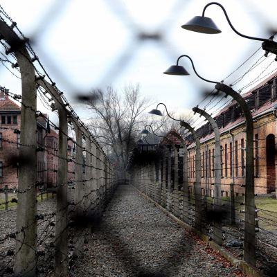 Verkkoaidan läpi otettu kuva Ausschwitzin tiilirakennuksista.