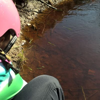 Sammakonkudun etsiminen ja tarkkailu on aina ollut lapsille mieluista keväthommaa.