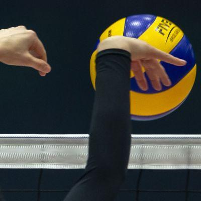 nainen heittää palloa verkon yli