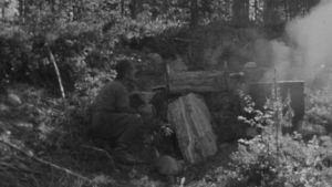 Mies keittää pontikkaa metsässä