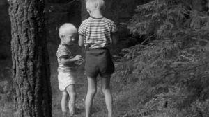 mv, kaksi poikaa metsässä