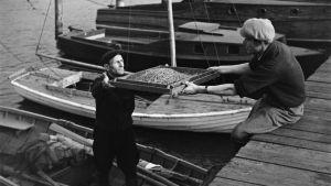 Miehiä ja siimoja Sörnäisissä 1950