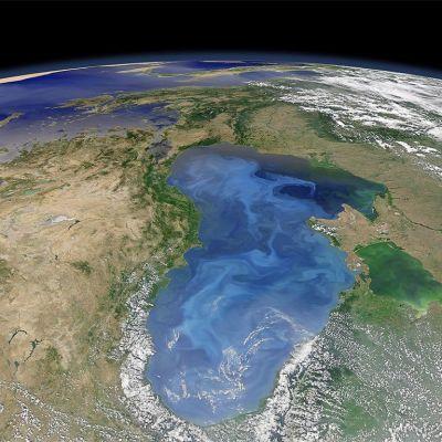 Nasan satelliittikuvassa näkyy kukkivan kasviplanktonin muodostamia lauttoja Mustanmeren pinnalla.