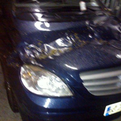 Myrsky kaatoi puun euralaisen Pekka Mikkolan auton konepellille.