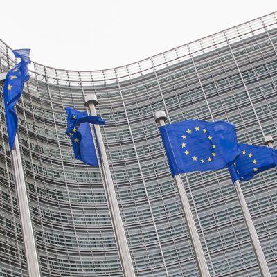 Euroopan liput liehuvat.