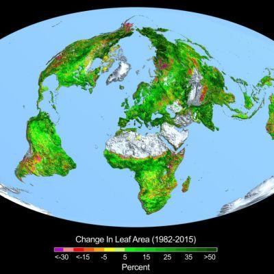 vihertyvä maapallo -piirros