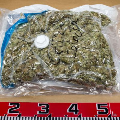 Poliisin takavarikoimaa marihuanaa.