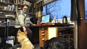 eläinlääkäri kotitoimistossaan