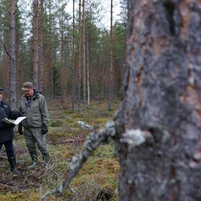 Ari Sapattinen ja Lasse Tarvonen
