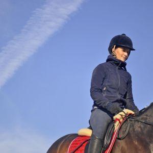 Ratsukko sinistä taivasta vasten