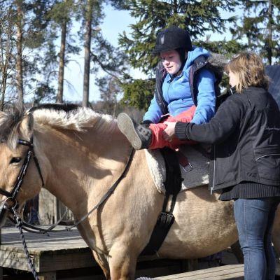 tyttö istuu ponin selässä, hoitaja kiristää satulavyötä