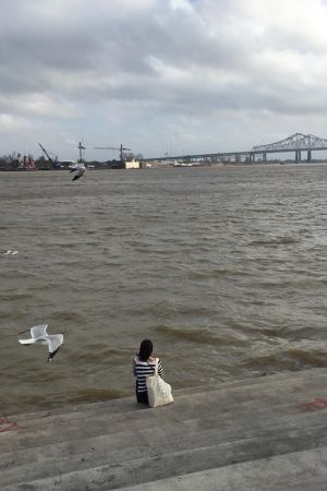Lokki lentää lähelle mietteliästä Riinaa, joka kuvattu takaa päin. Kuvassa taustalla valtavan iso ja harmaa Mississippi-joki siltoineen
