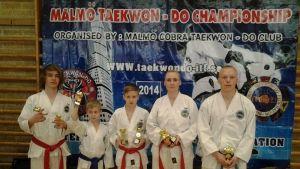 Medaljregn över Raseborg ITF Taekwond-Do