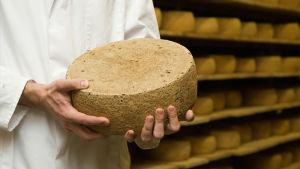 Backensholzin karjatilan juustoa