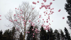 200 vaaleanpunaista ilmapalloa