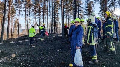 Frivilliga brandkårister i skog.