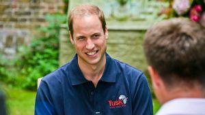 Prins William intervjuas av CNN