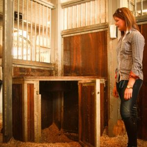 Nainen seisoo hevosen boxissa