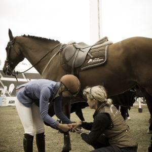 ratsastaja ja hoitaja putsaavat hevosen kavioita